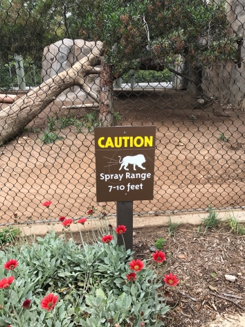 Warning sign near the lions at the San Diego Zoo